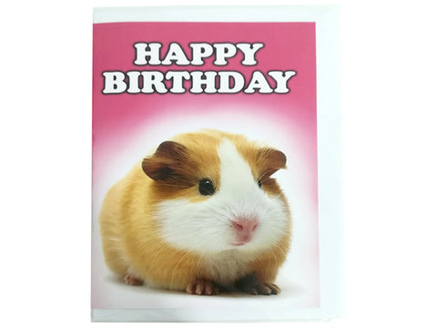 Birthday Card Collection - No. 50 Guinea Pig