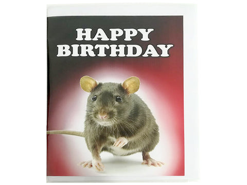 Birthday Card Collection - No. 52 Rat