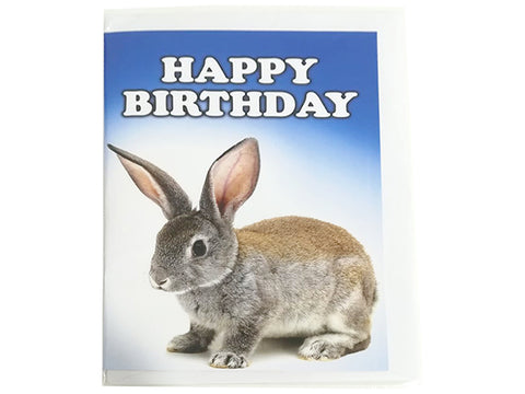 Birthday Card Collection - No. 54 Rabbit