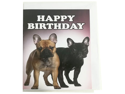 Birthday Card Collection - No. 55 French Bulldog