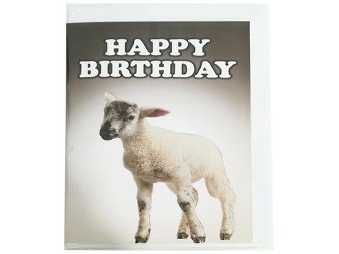Birthday Card Collection - No. 58 Lamb