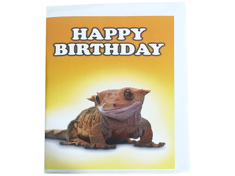 Birthday Card Collection - No. 61 Crested Gecko