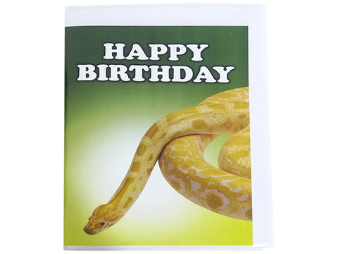 Birthday Card Collection - No. 62 Albino Burmese Python Snake