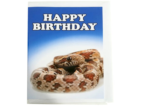 Birthday Card Collection - No. 64 Corn Snake