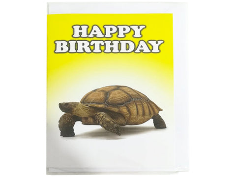 Birthday Card Collection - No. 67 Tortoise