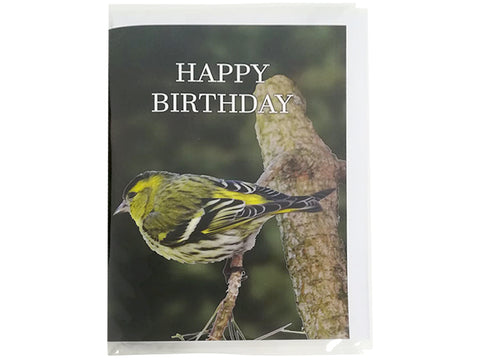 Birthday Card Collection - No6. Eurasian Siskin
