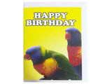 Birthday Card Collection - No. 8 Rainbow Lorikeets Parrot