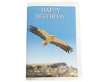 Birthday Card Collection - No. 8 Egyptian Vulture