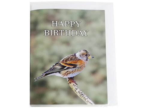 Birthday Card Collection - No9. Brambling