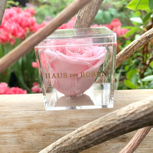 Blush Pink Rose - Forever Rose Gift Box