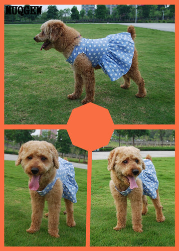 small dogs  dress Skirt