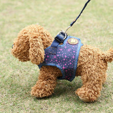 Load image into Gallery viewer, Reflective Pet Harness Leash Set Pet Lead Vest