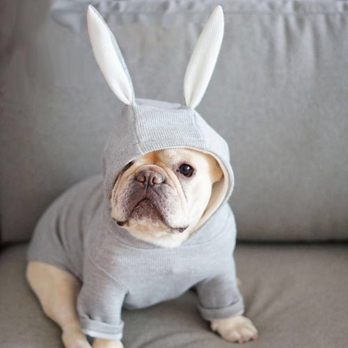 Cute Pet Hoodies Warm  Cotton Coats with Rabbit Ears