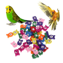 Load image into Gallery viewer, OOTDTY 50 Pcs/Bag Parrot Toy Wooden Colorful Fish Multipurpose