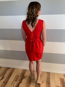Rose Side Pleat Dress