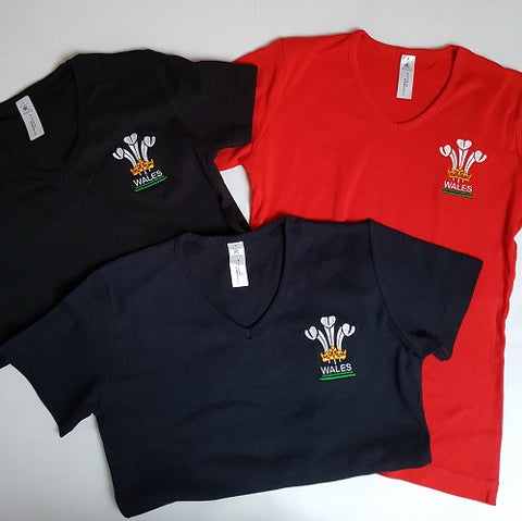 Welsh Feathers Tee