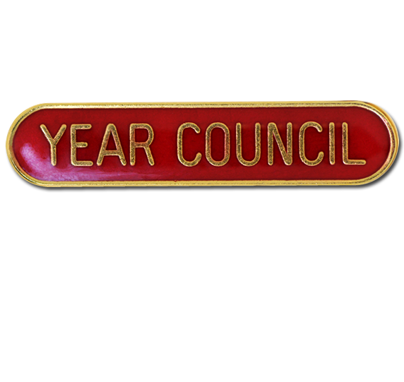 Year Council Pin Badge in Blue Enamel With Rounded Edge
