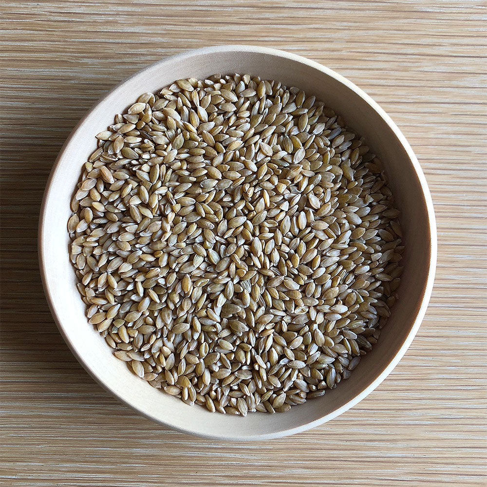 Organic EINKORN Wheat Berries