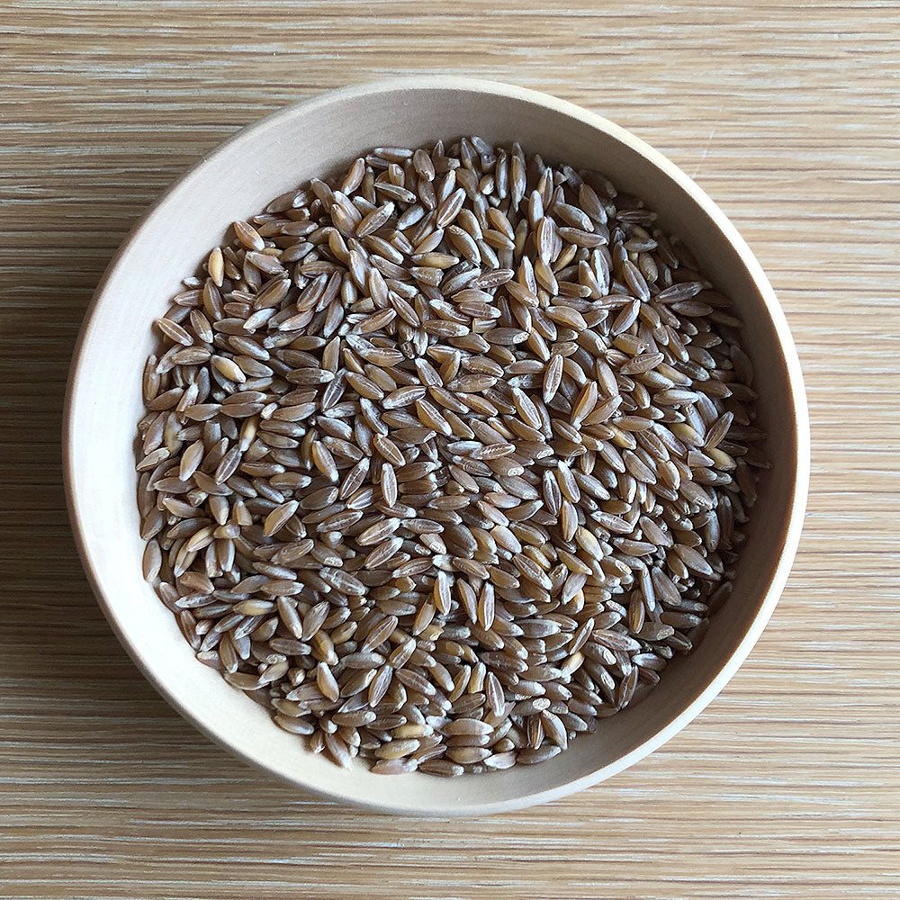 Organic EMMER Wheat Berries