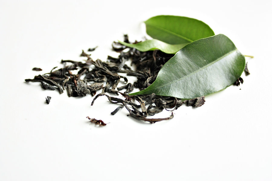 The Whole Body Benefits of Green Tea
