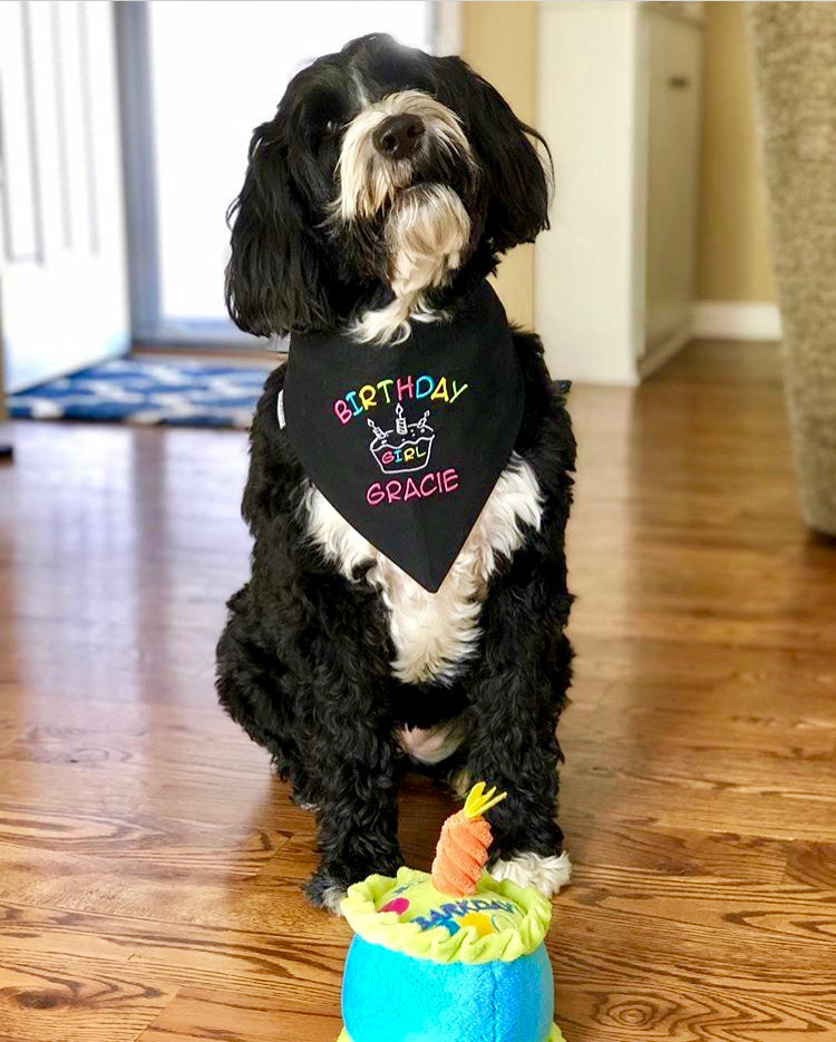 Birthday Bandana with a Personalized Cupcake