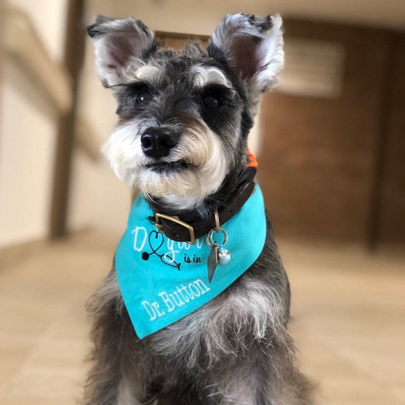 Personalized Therapy Dog Bandana