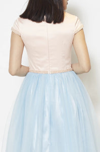 Neriah Block Color Tulle Dress