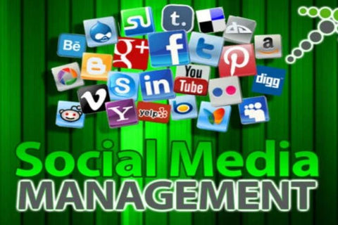 Social Media Manager (Priced per Month)