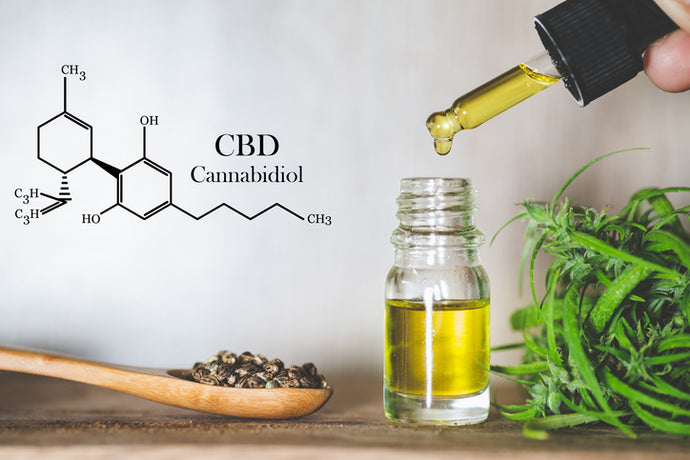 CBD CO2 Extraction Process