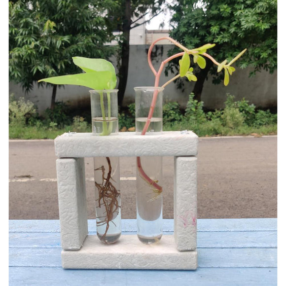 Square Stand with test tubes-Decor-Econiture-Ivory-Saryuhomes