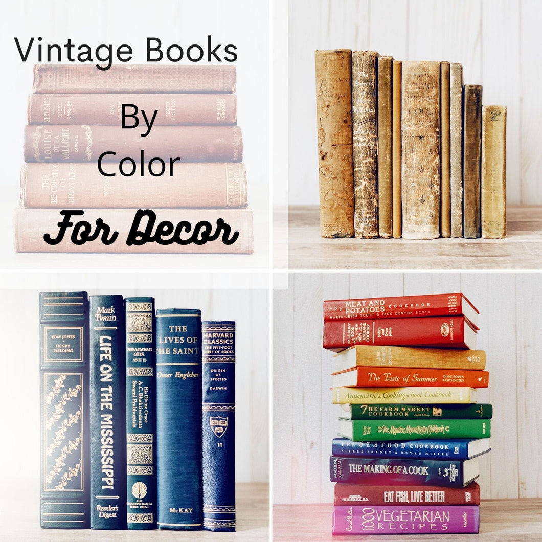 Vintage Decorative Books By Color for Bookshelf Decor, Real Books for Decorating, Home Staging, Individual Books