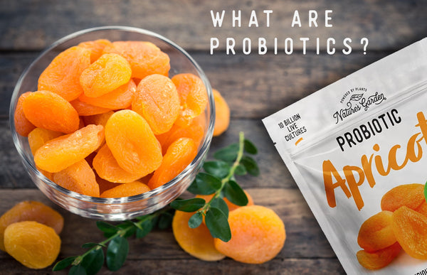 Probiotics are good for your health and digestive system. You can find probiotics in lots of foods like yogurt, apricots.