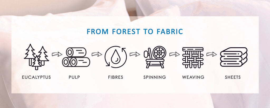 TENCEL from forest to fabric. TENCEL fibres are made from eucalyptus plants and spun into Lyocell fabric. Bed sheets Singapore.