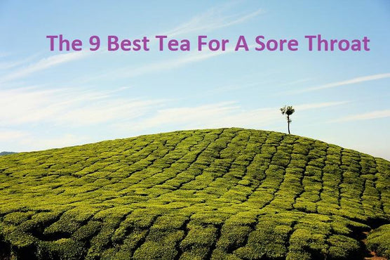 The 9 Best Tea For A Sore Throat