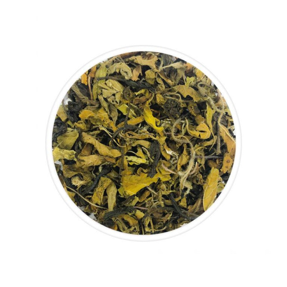 Tulsi Green Tea - TeaSwan