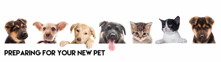 Preparing for your new pet