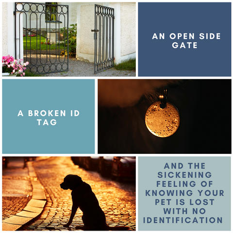Open Side Gate, Rusty ID Tag and Losing a Pet lead to the idea of customising dog collars.