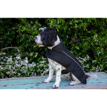 Load image into Gallery viewer, Embroidered Dog Coat 50cm