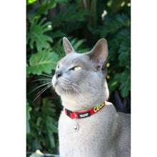 Load image into Gallery viewer, CAT COLLAR - Embroidered