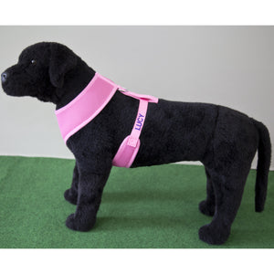 PET HARNESS Dusty Pink - Embroidered