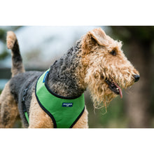 Load image into Gallery viewer, PET HARNESS Green - Embroidered