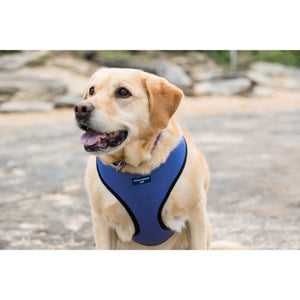 Pet Harness Embroidered - Purple