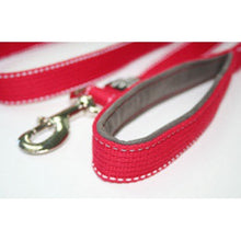 Load image into Gallery viewer, 2m Padded Handle Embroidered Lead