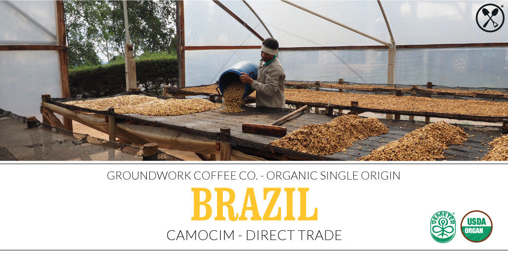 Brazil Camocim Direct Trade Single Origin Coffee
