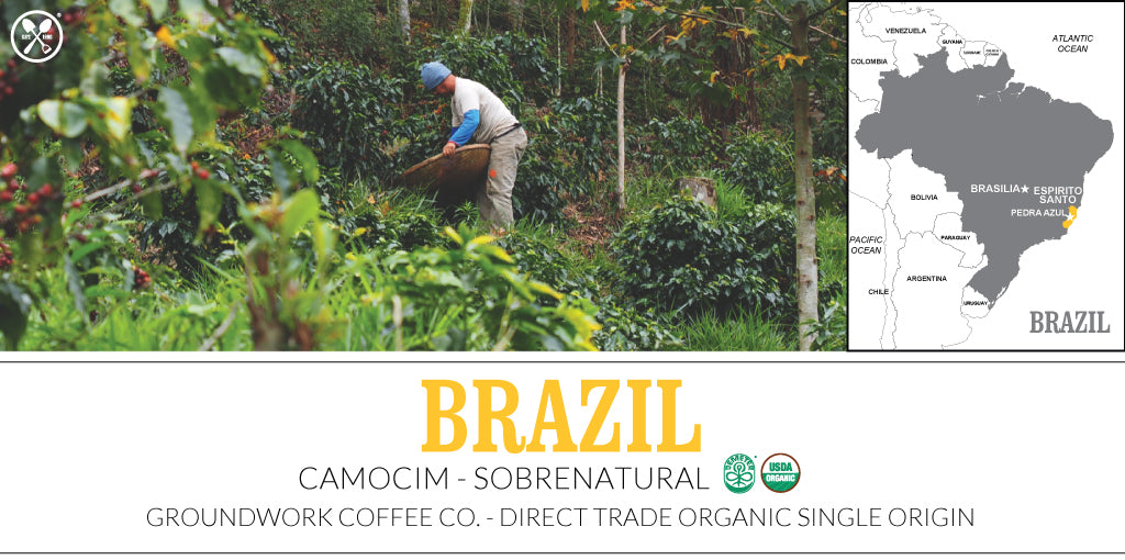 Groundwork Coffee Co.'s Special Reserve - Organic Brazil Camocim: Super Natural single origin coffee
