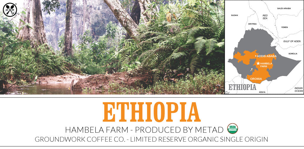 Organic Ethiopia: Hambela Farm-Produced by METAD