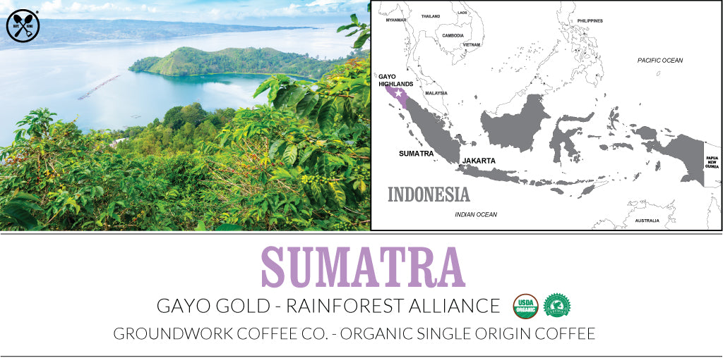 Groundwork Coffee Co.'s Sumatra Gayo Gold certified organic single origin coffee