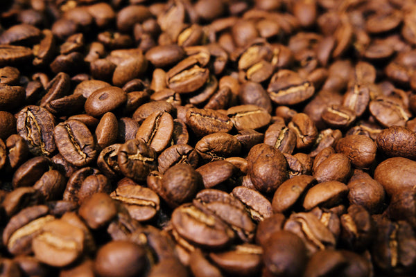 Coffee Beans for Cupping