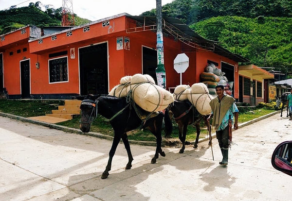 Jeff Chean writes from origin about his trip around Colombia