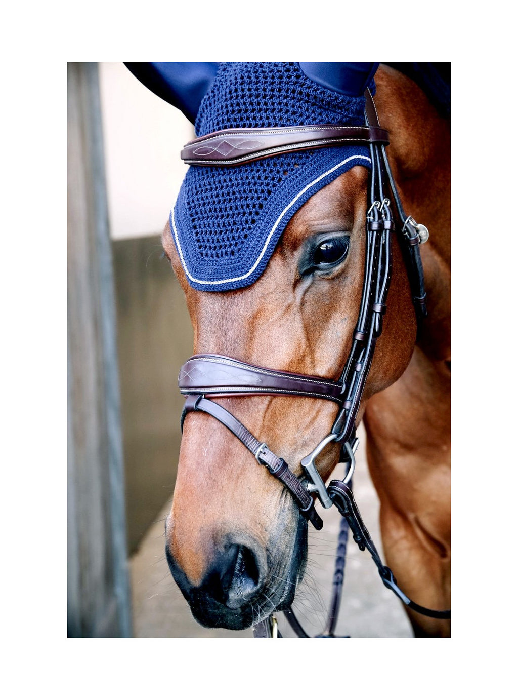 Dyon Anatomic flash noseband